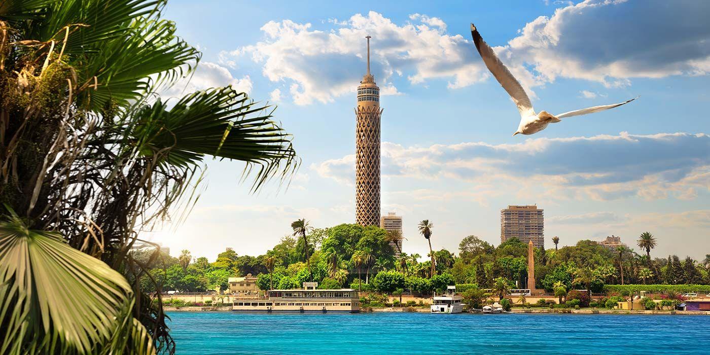 أفضل أماكن التسوق والمطاعم في القاهرة