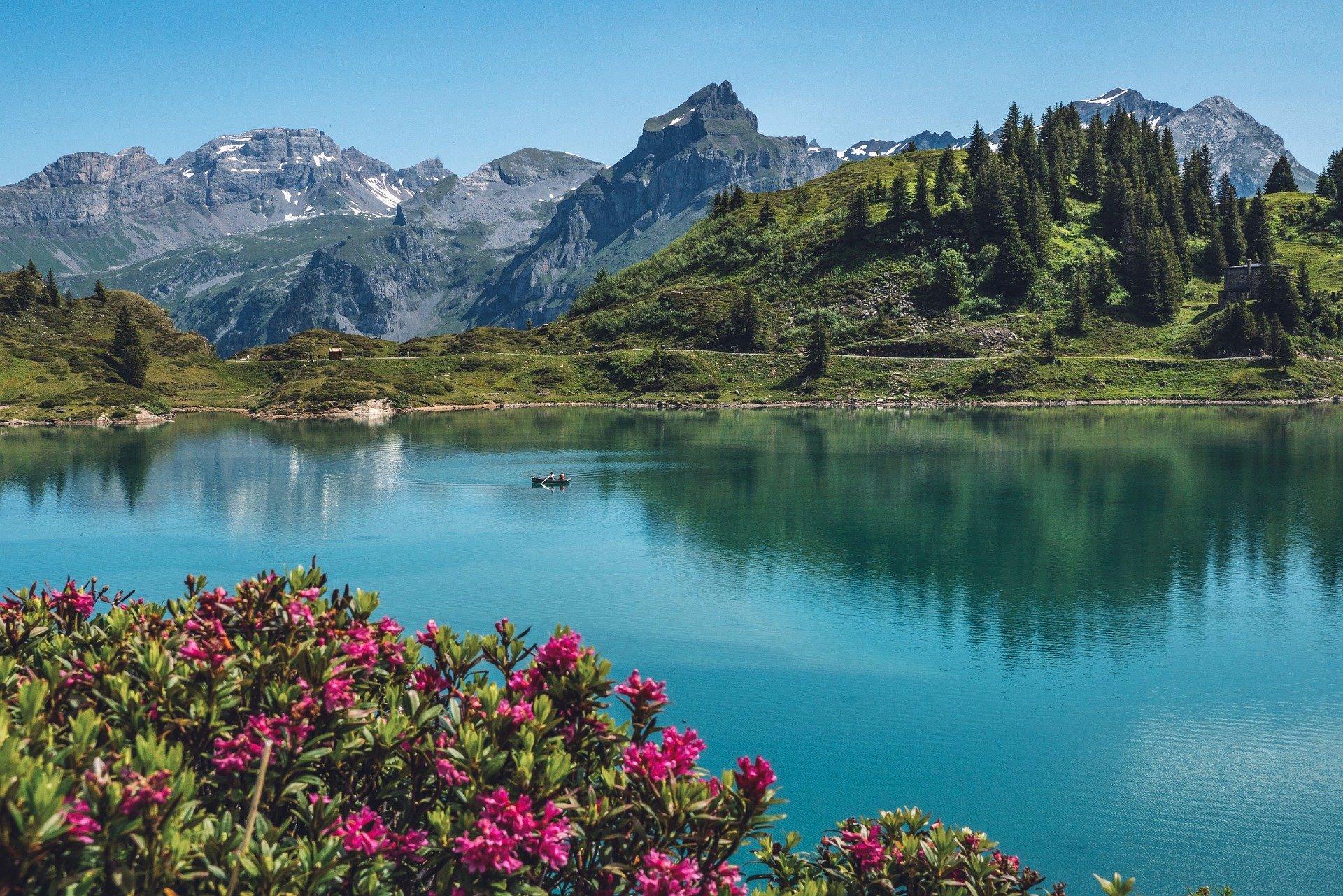 دليلك السياحي الي سويسرا