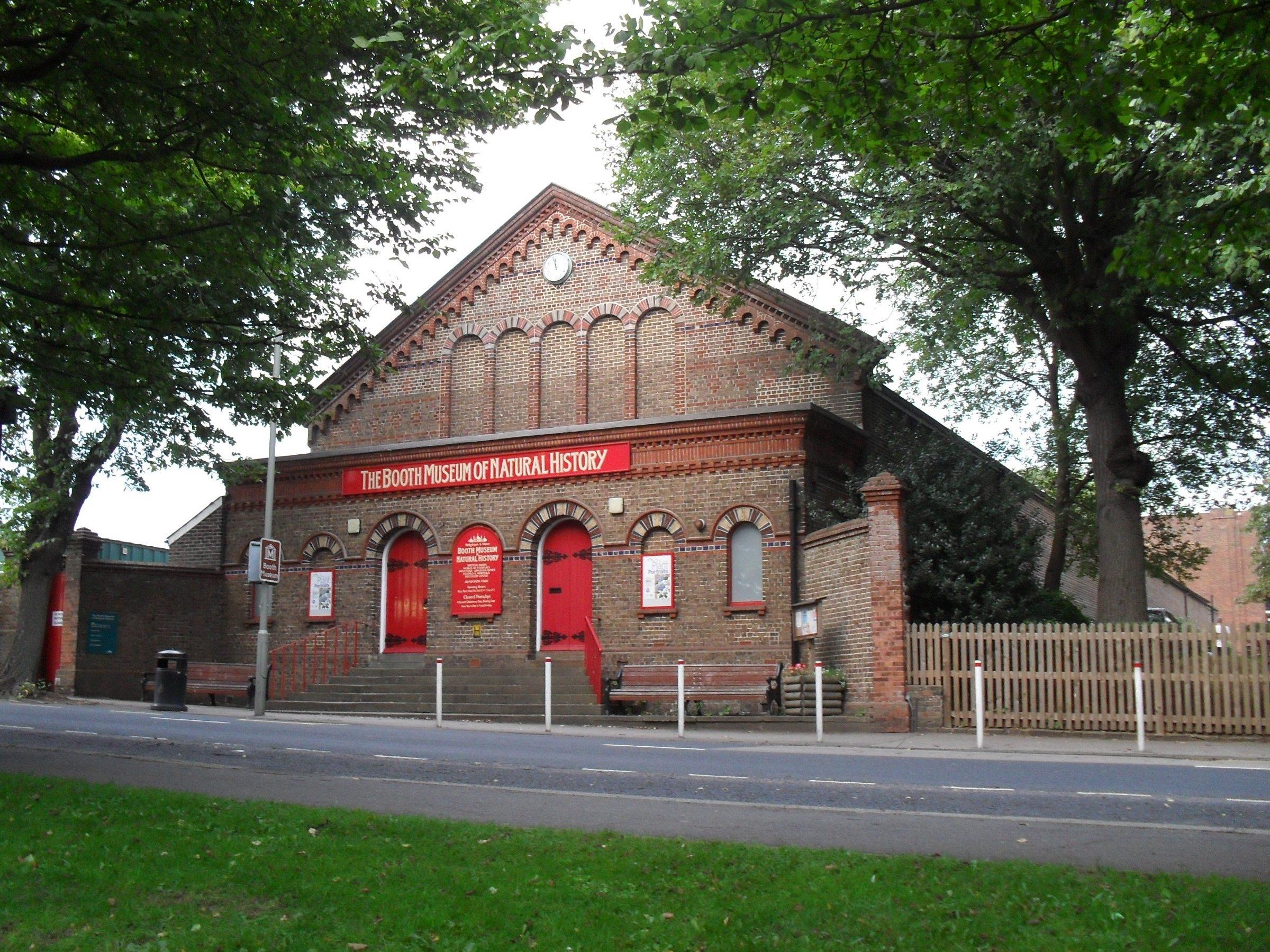 بريطانيا برايتون اهم الاماكن السياحية متحف بوث للتاريخ الطبيعي