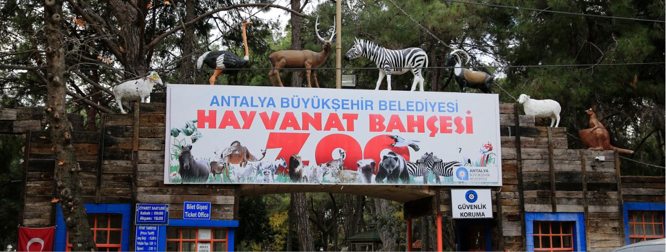 تركيا انطاليا اهم الاماكن السياحيه حديقة الحيوان انطاليا