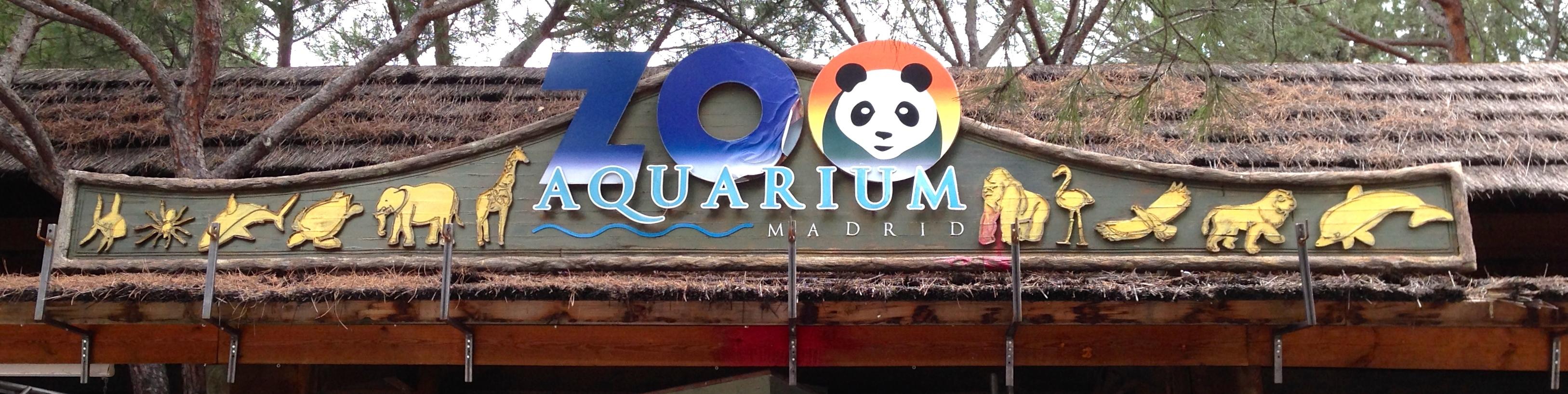 إسبانيا مدريد اهم الاماكن السياحية اكوايروم حديقة حيوانات مدريد