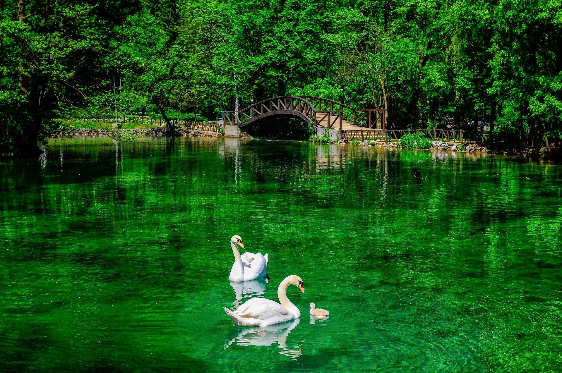 البوسنة والهرسك سراييفو اهم الاماكن السياحية حديقة ربيع البوسنه