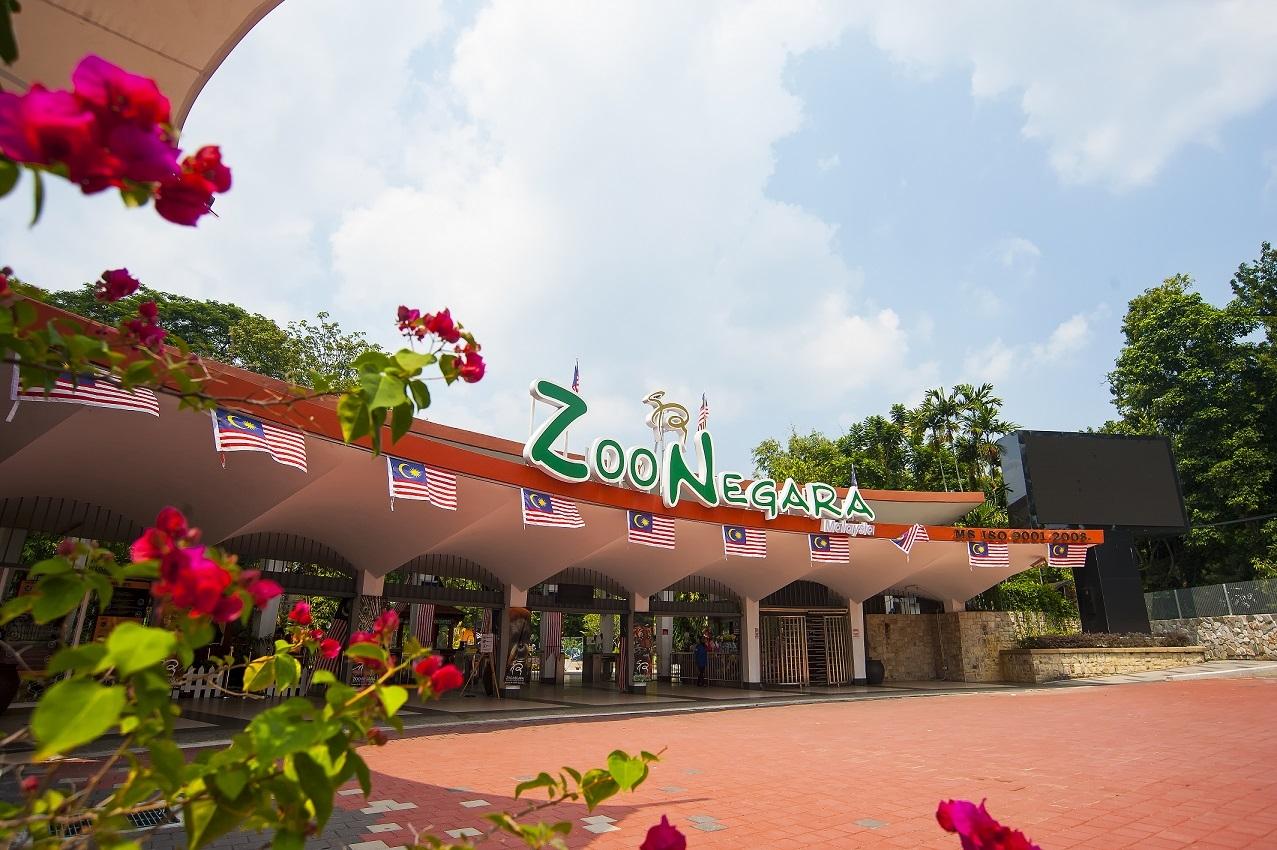 الاماكن السياحيه ماليزيا كوالالمبور حديقة حيوانات نيجارا الوطنية